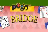 Bridge Pogo