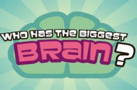 Pogo Who Has The Biggest Brain